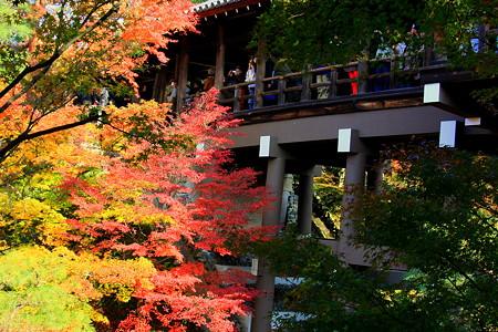 東福寺  通天橋と紅葉