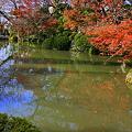 写真: 清水寺 池