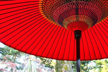 時雨亭 野点傘