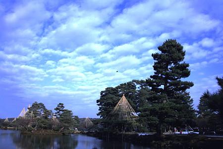 兼六園 霞が池と空