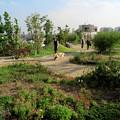 Photos: 目黒天空庭園