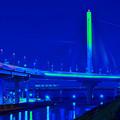 かつしかハーブ橋
