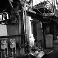 昭和の香り「小向マーケット」5