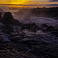 多摩川黎明