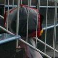 写真: スタンド入口からピッチの様子を窺うHonda FCのマスコット パッサーロ(...