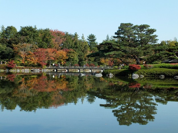 日本庭園240