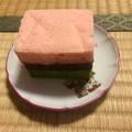 写真: 20160226 ブログ煎茶会5
