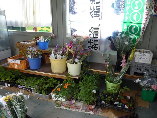農産物直売所【かあちゃんの新鮮野菜の店】007