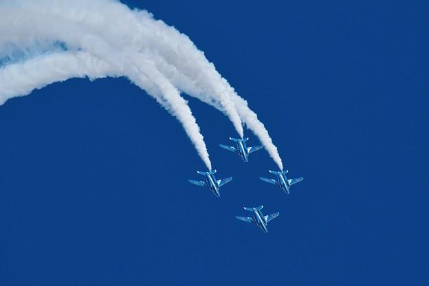 Photos: T-4 BlueImpulse