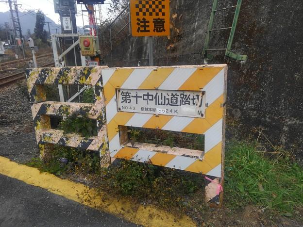 Photos: 第十中仙道踏切