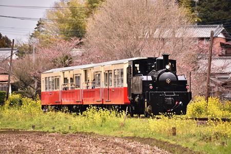 小湊鐡道里山トロッコ