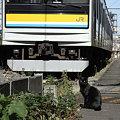 Photos: R0029294