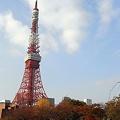 写真: R0031697 - 秋の東京タワー