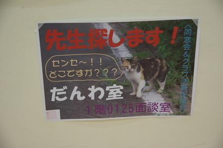 今年もポスターを採用してもらいました。