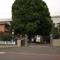 写真: 名門高校