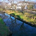 写真: 氷川神社の裏にある公民館