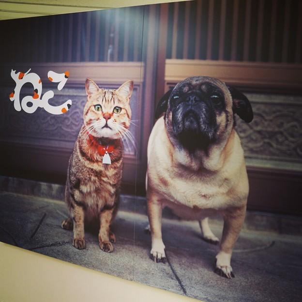 Photos: 川越の百貨店