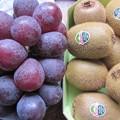 10・6今日買った果物
