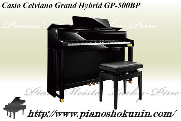 Casio Celviano GP-500BP