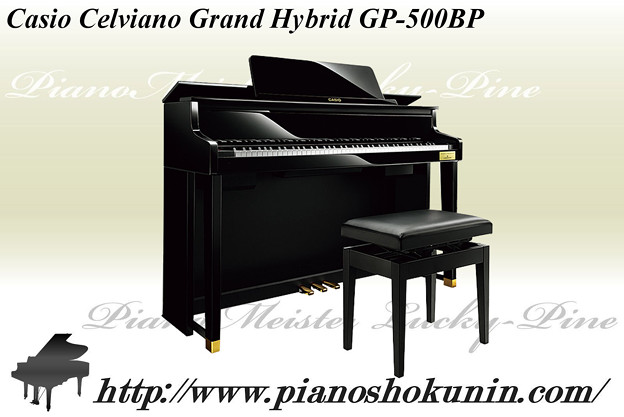 Casio Celviano GP-500BP