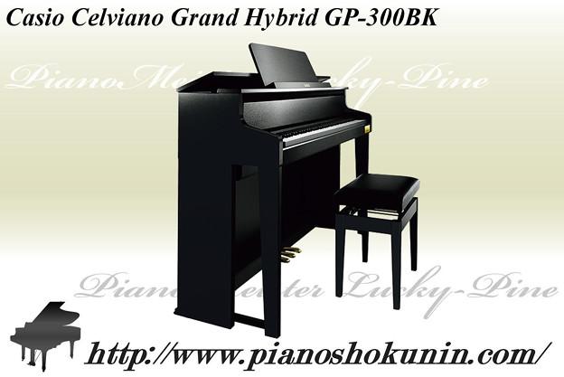 Casio Celviano GP-300BK