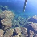 写真: きれいな海