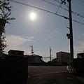 Photos: 金環日食 最中