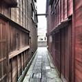 Photos: 路地(主計町)