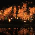 1661 香嵐渓 紅葉ライトアップ@愛知