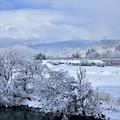 2015冬景色