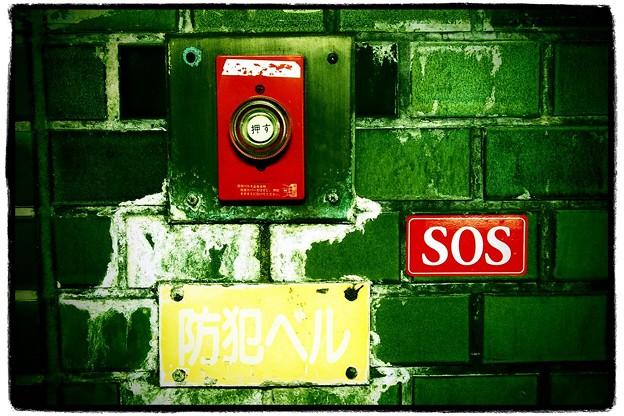 写真: 【第84回モノコン】 SOS