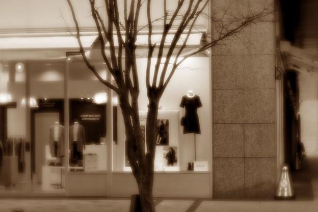 Photos: 街角