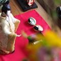 Photos: 堺七まち ひな飾りめぐり