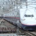 Photos: 上越新幹線E4系 P20編成他16両編成