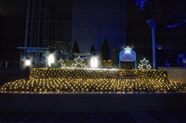 Shinjuku_Southern-Lights 4(091115)