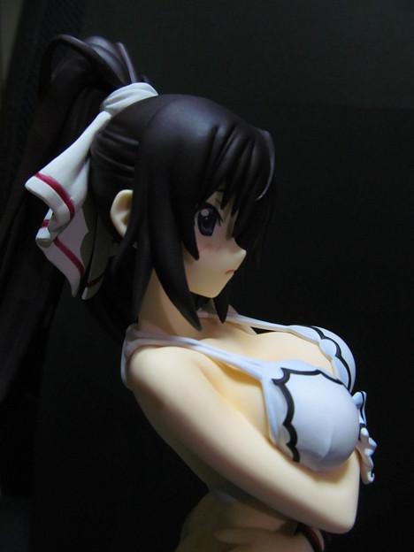 Gift インフィニット・ストラトス2 篠ノ之箒 水着Ver.