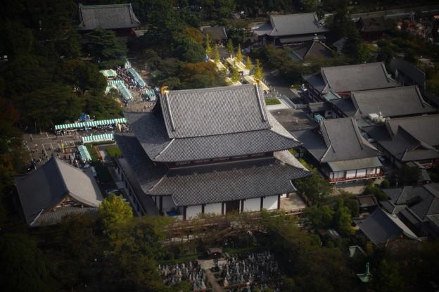 増上寺を望む