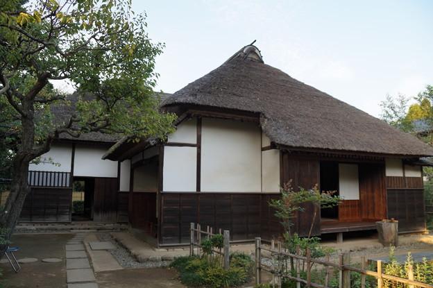 旧河原家住宅 3