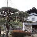 Photos: 丸森 斎理屋敷 2