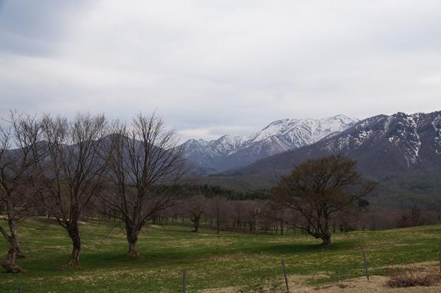 笹ヶ峰牧場 3