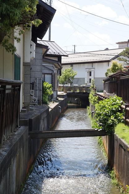 長井 平野川遊歩道 3