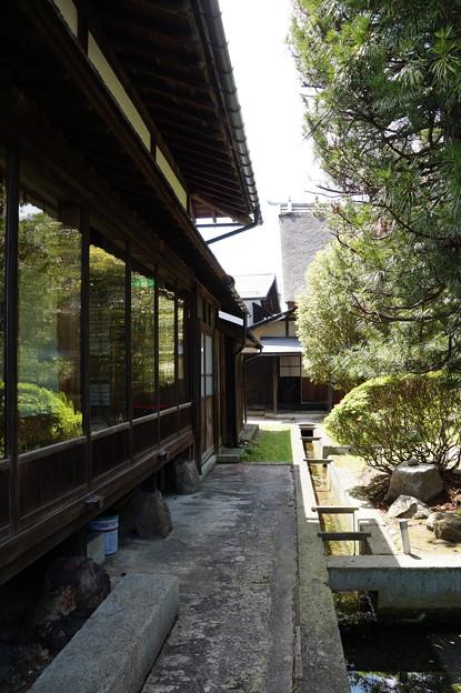 長井 丸大扇屋 2