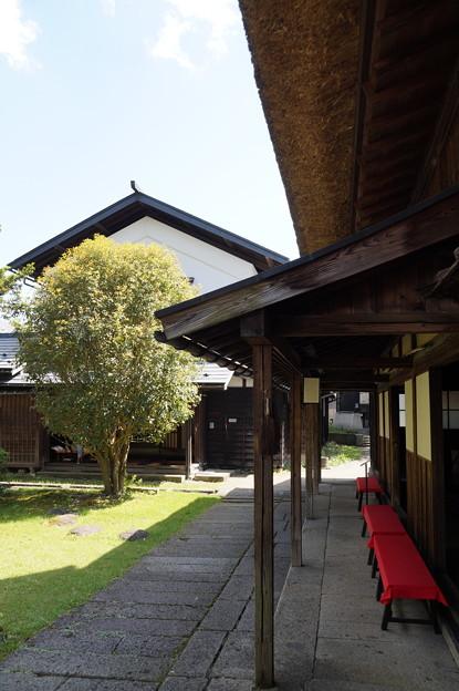 長井 丸大扇屋 4