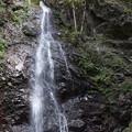 写真: 檜原村 払沢の滝 3