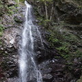 檜原村 払沢の滝 3
