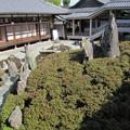 Photos: 松尾大社・曲水の庭 058