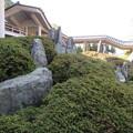 Photos: 松尾大社・上古の庭 052