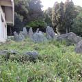 Photos: 松尾大社・上古の庭 059
