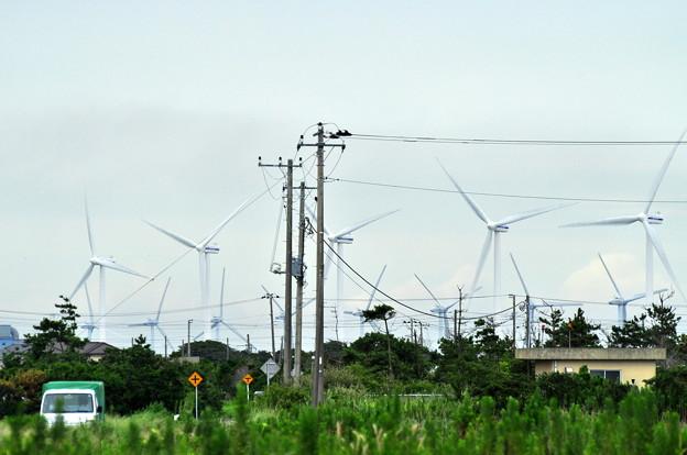 風力発電01