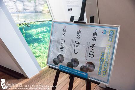 fukushima140727001